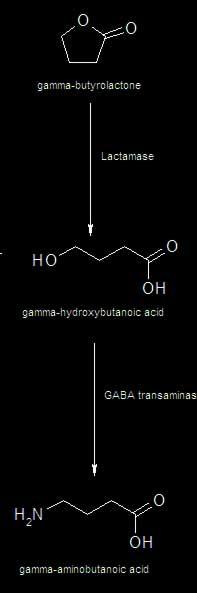 ghb chemische Zusammensetzung