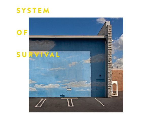 COVER System of Survival