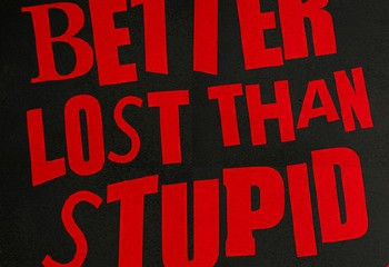 Better-Lost-Than-Stupid-DC10.jpg