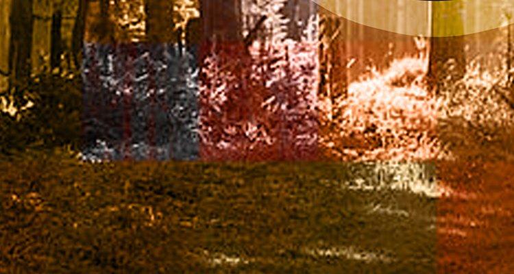 Die Wooden Tales EP auf Parquet